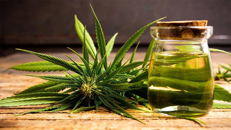 poate marijuana să vă ajute să pierdeți în greutate)